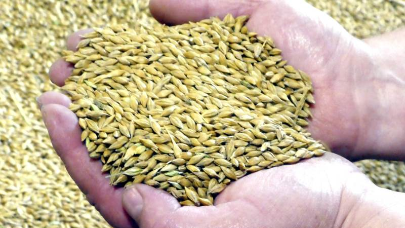 Handel med korn og øvrige produkter er blandt temaerne ved sommerens HandelsErfa hos Centrovice den 29. og 30. maj.