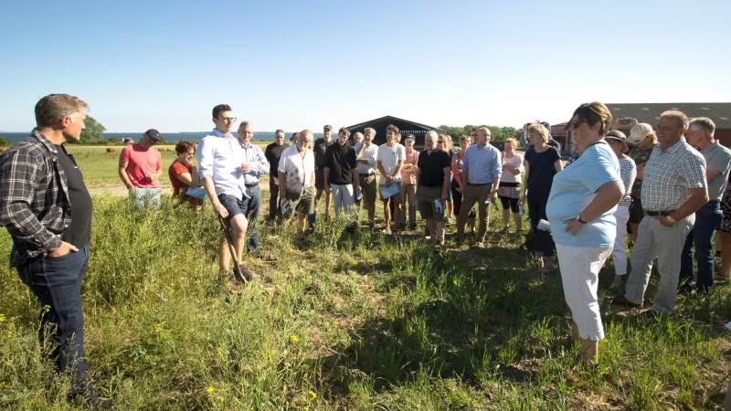 Forud for den politiske debat var de godt 60 deltagere på markvandring, hvor driftsleder Bent Ole Hansen fortalte, hvordan Strandegård praktiserer det økologiske håndværk. Foto: Hanne Børsch
