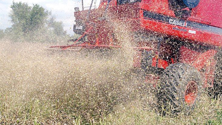 Det støver gevaldigt, når der høstes, og der skal ikke meget til, førend der kan gå ild. Derfor lyder rådet, at man får renset og holdt mejetærskeren så ren som muligt.