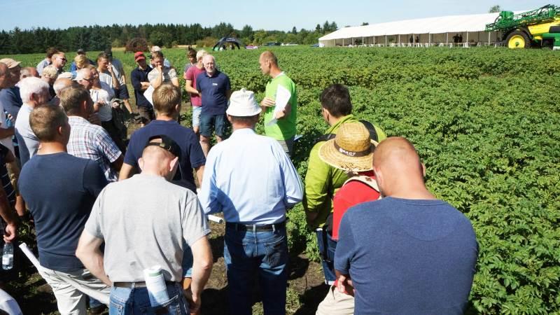 Omkring 230 var mødt op, da Sagro sammen med Lemvigegnens Landboforening, KMC og Ytteborg holdt kartoffeldag 2018 i Arnborg.