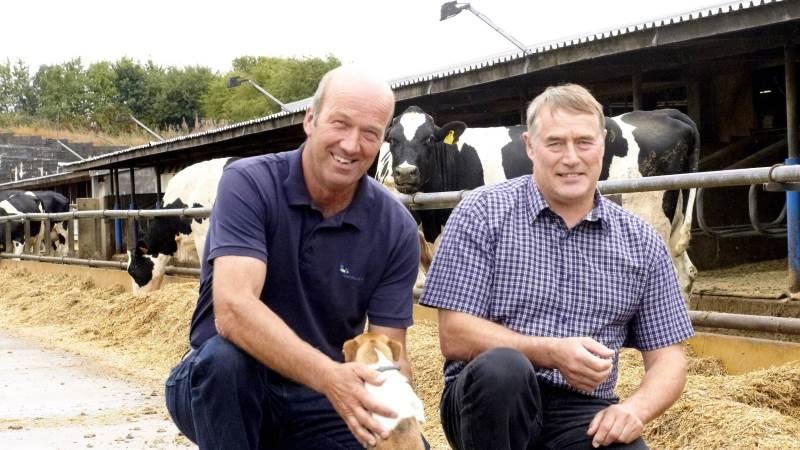 Mælkeproducent Kurt Jensen (th) er en af dem, som allerede for et par måneder siden begyndte med »Plan B«. En foderplan, som skal strække grovfoderet. Kvægrådgiver Knud R. Jensen, LandboNord, mener at majsen langt de fleste steder ser bedre ud end frygtet.