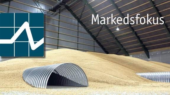 Sidste uge var en uge, hvor kornpriserne endegyldigt gik fra stigende tendens til faldende tendens. I det mindste er pilen nu ned for kornpriserne for en stund, og det er lige nu kun rapsen, der holder fast og stadig er i køb. Men der er en god grundlæggende efterspørgsel til stede, som kan holde hånden under kornpriserne og dermed sætte gang i et nyt opsving igen.