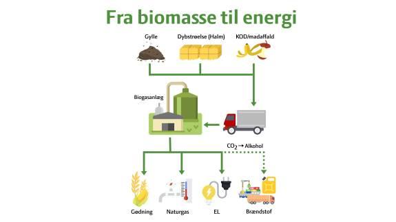 På Hobro Dyrskue sætter Agri Nord fokus på det planlagte biogasanlæg Hobro Nord, og på de gevinster både landmand og samfund får ved det.