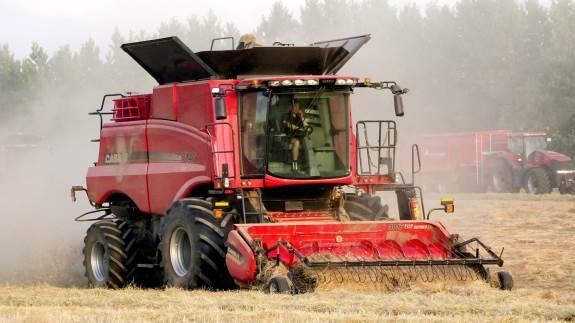 Case IH Axial-Flow 7140 med 12 fods pick-up i rajgræs. Ifølge producenten har årets undersøgelser landet over givet et meget entydigt billede af, at en Axial-Flow maskine klarer sig rigtigt godt som frøtærsker. - Faktisk den bedste, lyder det ubeskedent fra importørens egne anprisninger.