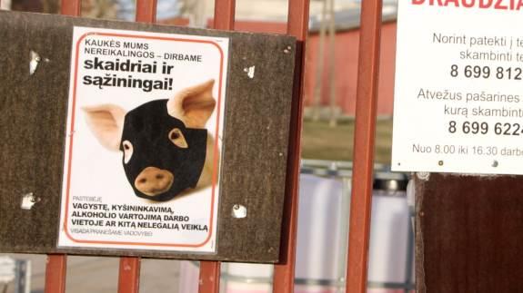 Afrikansk svinepest har plaget Østeuropa i løbet af 2018. Her ses indgangen til en svinefarm i Lithauen. Arkivfoto: Erik Hansen.