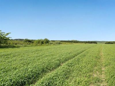65 ha landbrugsjord