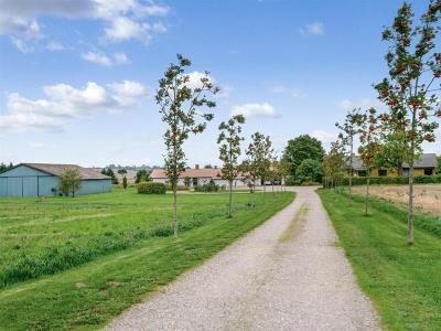 Fritidslandbrug/Hesteejendom 9,3 ha. - Ørsted