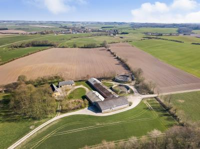 Planteavlsgård på ca. 65,3 ha med slagtesvinsproduktion