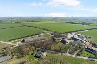 Kvægejendom med 270 malkekøer og 100 hektar omdrift ved Farsø.