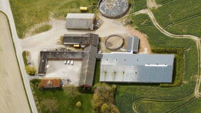 Svineproduktion og planteavl - Randers