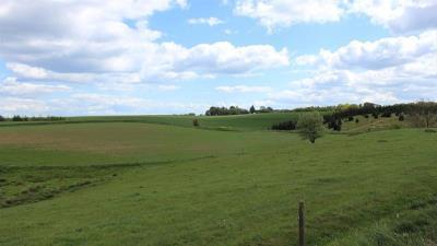 Landbrugsjord u. bygninger 11,6 ha - Stouby