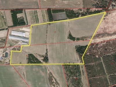 19,4 ha landbrugsjord