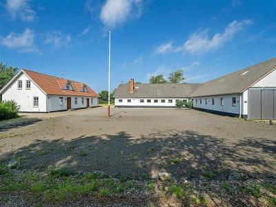 8, 3 ha minkfarm øst for Ringkøbing Fjord