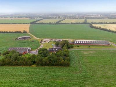 Plads til 160 køer i moderne løsdriftsstald