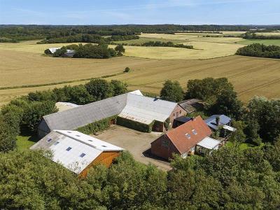 Lystejendom på 9,7 hektar med mange muligheder
