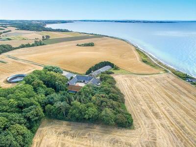 Planteavl 123 ha. - Martofte Hindsholm