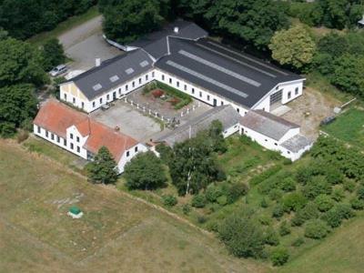 Det størst beplantede areal med hasselnødder i Danmark