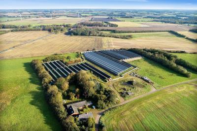 Tom minkfarm med miljøgodkendelse til 5.000 tæver