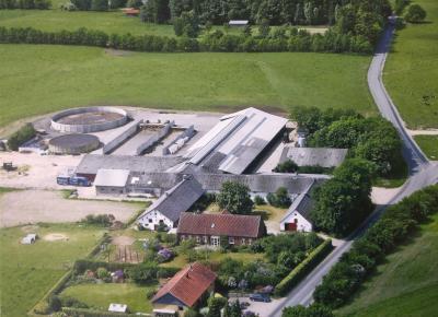 Økologisk mælkeproduktion - Them
