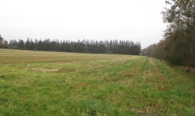 Ca 64 ha landbrugsjord sælges