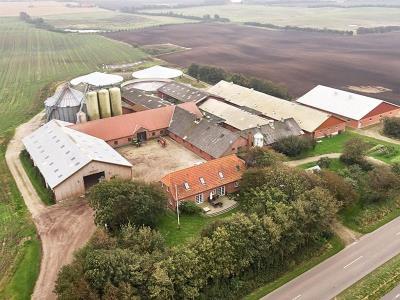Svineproduktionsbedrift i fuld drift ved Hurup Thy