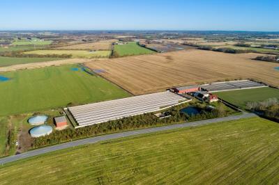Tom minkfarm godkendt til 109,4 DE