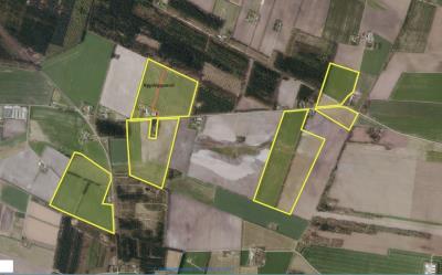 Økologisk landbrugsjord