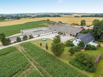Planteavl - tidligere mælkeproduktion 90 ha. Midtfyn.