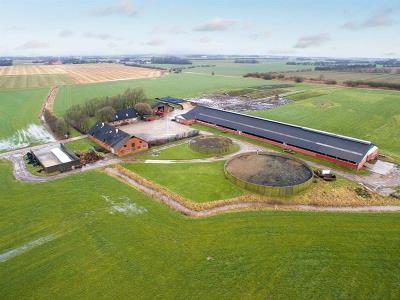 Mælkeproduktionsejendom - 185 køer og 105 ha