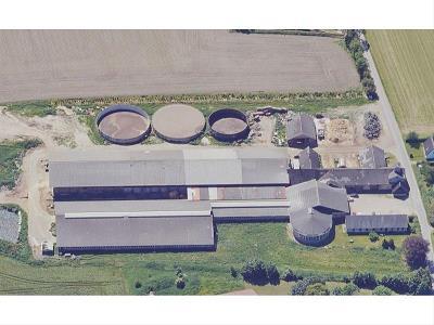 Stor mælkeproduktion på Nordfyn med 525 køer + opdræt – ca. 347 ha, heraf ca. 33...