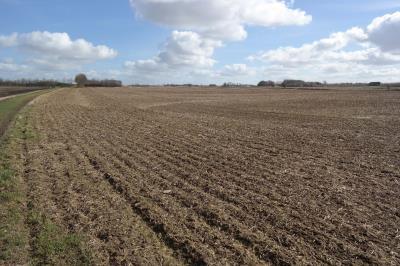 Landbrugsjord