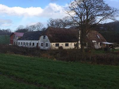 Fritdslandbrug/planteavl 21,8 ha nær Sjølund