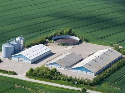 Slagtesvineproduktion 10.000/år, 157 ha i Nordborg