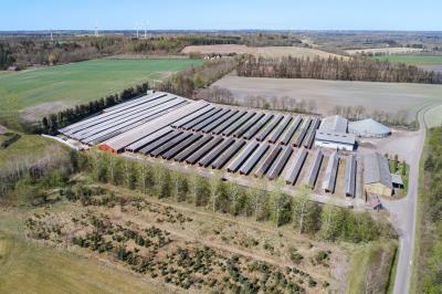 Attraktiv minkfarm til 6.000 tæver med godt stuehus
