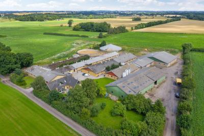 Udlejet svineproduktion og planteavl ved Nr. Broby på Fyn