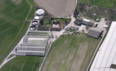 Eskelund - én af DK største slagtesvineproduktioner med egen foderfabrik - udbyd...