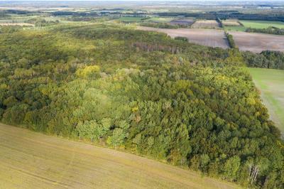 Skovparcel 23 ha.