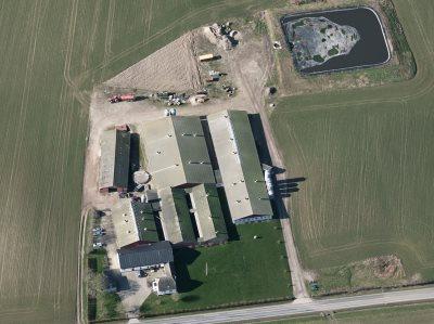 Svine-/ planteavlsejendom 110 ha på Langeland