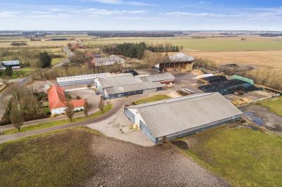 <b>Kvæggård beliggende mellem Frifelt og Brøns.</b>